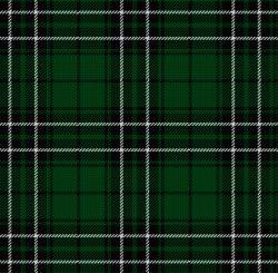 Clan MacLean of Dochgarroch Tartan